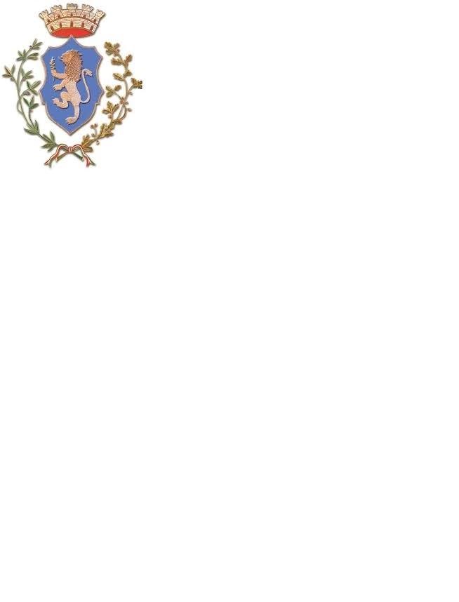 Consiglio Comunale del giorno 03.06.2021 in modalità telematica
