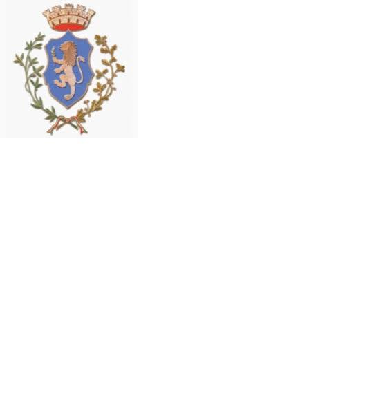 Convocazione Consiglio Comunale giovedì 13.02.2020
